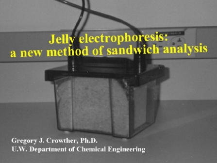 jelly electrophoresis