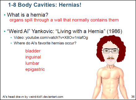 Dr. Alfred Yankovic, Adjunct Professor of Medicine