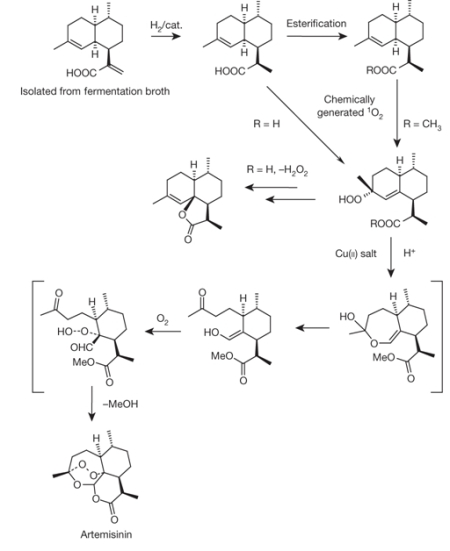 Artesinin synthesis, part 2
