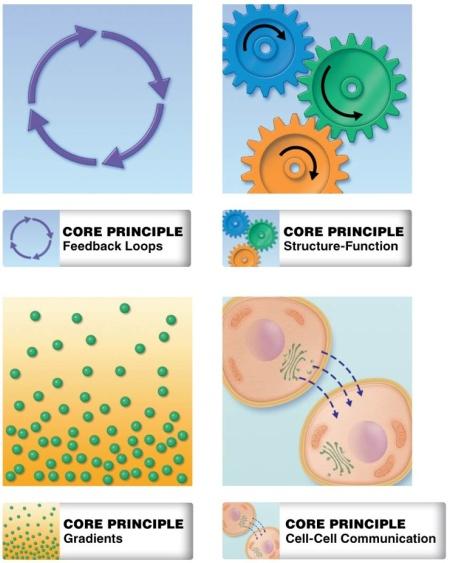 Core_Concepts